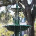 Savannah Green by Carol Groenen
