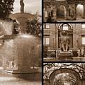 Savannah Landmarks In Sepia by Carol Groenen
