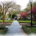 Savannah Park. by Nereida Slesarchik Cedeno Wilcoxon