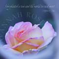 Savannah Rose 3 by Terry Davis