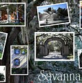 Savannah Scenes Collage by Carol Groenen