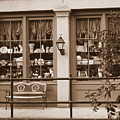 Savannah Sepia - Antique Shop by Carol Groenen