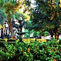 Savannah Square by Joan  Minchak