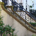 Savannah Stairs by Carol Groenen