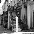 Savannah Steps Black And White by Carol Groenen