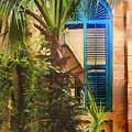 Savannah Window by Sharon Foster