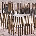 Save The Dunes by Bob Slitzan