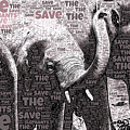 Save The Elephants by Susan Maxwell Schmidt