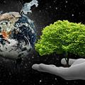 Save Tree by Rajnesh Prajapati