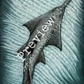 Sawfish by Amber Marine