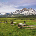Sawtooth Fence by Aaron Spong