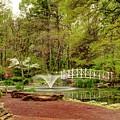 Sayen Gardens Bridge Series by Geraldine Scull