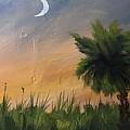 Sc Sunset  by Jerry Walker