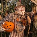 Scarecrow With A Carved Pumpkin  In A Corn Field by Oleksiy Maksymenko