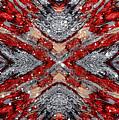 Scarlet Entanglement by Jolanta Anna Karolska