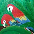 Scarlet Macaws  by Melissa Suzanne Ryan