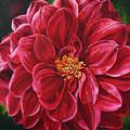 Scarlet Stunner by Helen Shideler