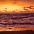 Scarlet Sunrise  by Susan Cole Kelly