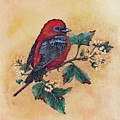 Scarlet Tanager - Acrylic Painting by Cindy Treger