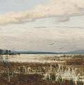 Scene Of Chiemsee, Moor Landscape by August Schaeffer von Wienwald