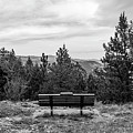 Scenic Bench In Black And White by Michael Putthoff
