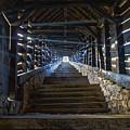 Scholar's Stairs Sighisoara by Adam Rainoff