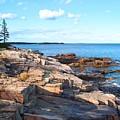 Schoodic Shoreline  by Scott  Bricker