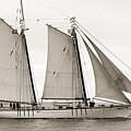 Schooner Harvey Gamage Of Islesboro Maine by Dustin K Ryan