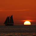 Schooner In Red Sunset by Susanne Van Hulst