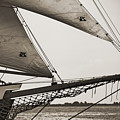 Schooner Pride Tall Ship Charleston Sc by Dustin K Ryan