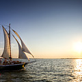 Schooner Welcome Sunset Charleston Sc by Dustin K Ryan
