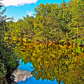 Schroon River Reflection In The Adirondacks-new York by Ruth Hager