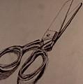 Scissors by Chris  Riley
