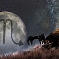 Scorpio Zodiac Symbol by Daniel Eskridge