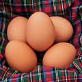 Scotch Eggs by Susie Peek