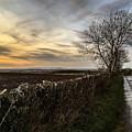 Scotland At Sunset by Jennifer Cairney