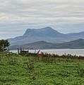 Scotland Landscape IIi by Chuck Kuhn