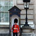 Scots Guard Buckingham Palace by James Brunker