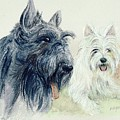 Scottie And Westie by Morgan Fitzsimons