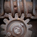 Screw And Gear  by Chalet Roome-Rigdon