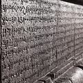 Scriptures by Krishnan Srinivasan