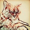 Scruffy  by Jenn Teel
