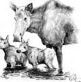 Scruffy Moose Family by Bob Patterson