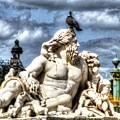 Sculptur And Birds Paris  by Yury Bashkin