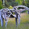 Sculpture Of Horse by Sonali Gangane