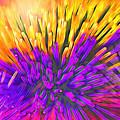 Sea Anemone Abstract - Kooosh Ball by Steve Ohlsen