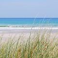 Sea Breeze by Jocelyn Friis