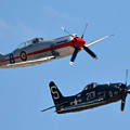 Sea Fury And Bearcat by Tommy Anderson