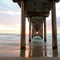 Sea Gull Watching At Scripps Pier by Michael Sangiolo