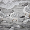 Sea Gulls Dodging The Ocean Waves by Kathy Marrs Chandler